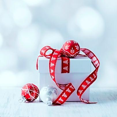 Weihnachtsaktion: WEB-Pflege verschenken
